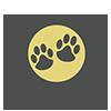 ткань, лояльная к домашним животным